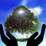 Ley de la nueva percepción: volver a unirse con el todo