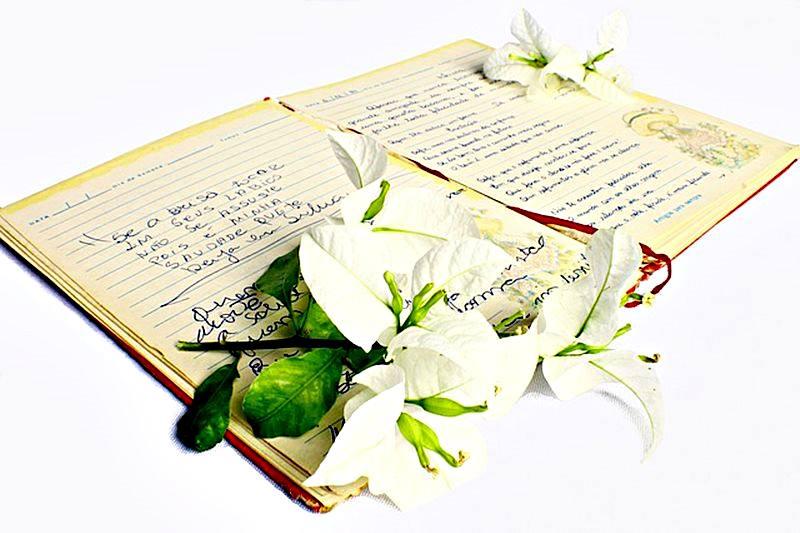 La poesía es un buen ejercicio para desarrollar nuestra percepción intuitiva.