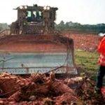 La fatiga de la compasión (II) :: El grito de Rachel Corrie